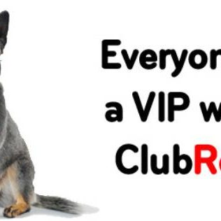Club Red: VIP Car Hire